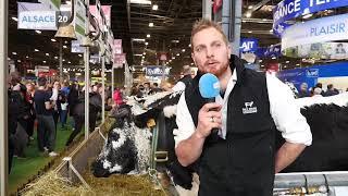 #PARIS - Salon de l'agriculture : zoom sur les vaches vosgiennes