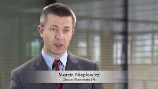 Podsumowanie 2015 roku w branży leasingowej - Główny Ekonomista EFL