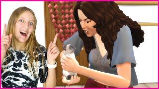 Adopting a Kitten!!!