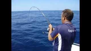 2013 08 31 Concurso pesca CNRP corvinas gigantes