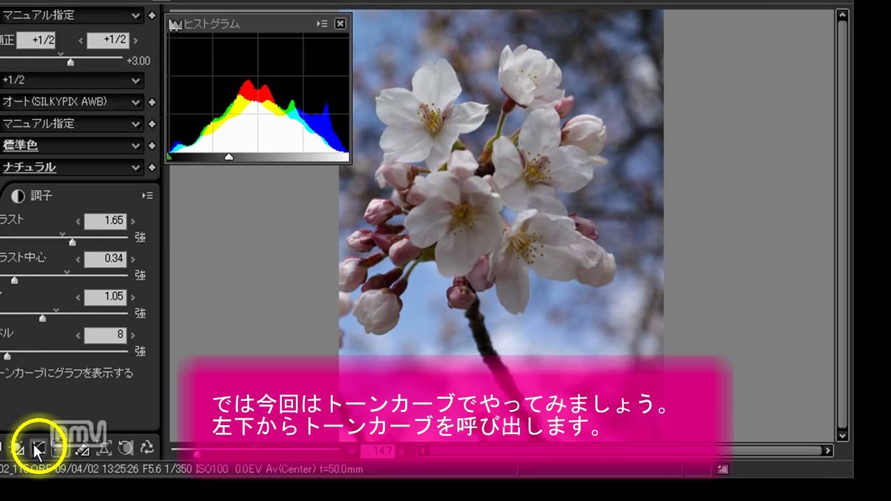Developing a RAW file with SILKYPIX Pro 4 0