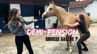 Demi-pension, grosse galère !? 🤔 I Georgette ou Taxi ?