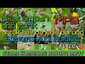 Suara Pikat Burung Kecil Anti Zonk  Mp3 - Mp4 Download
