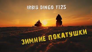 25-02-2019 Покатушки на снегоходе Irbis Dingo T125