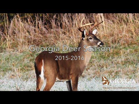 Georgia Deer Season 2015-2016