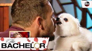 Bloopers from Colton's Season – The Bachelor