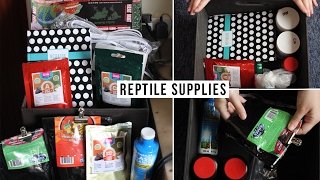 Reptile Supplies For 6 Lizards!