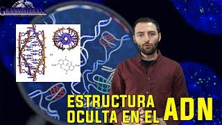 IMPACTANTE DESCUBRIMIENTO – EL ADN OCULTA UNA ESTRUCTURA EN LA DOBLE HÉLICE