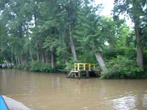 delta of parana river