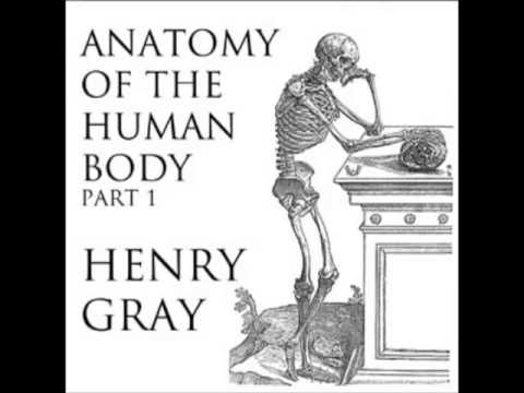 Anatomy Of The Human Body Full Audiobook Part 1 Of 39 Youtube
