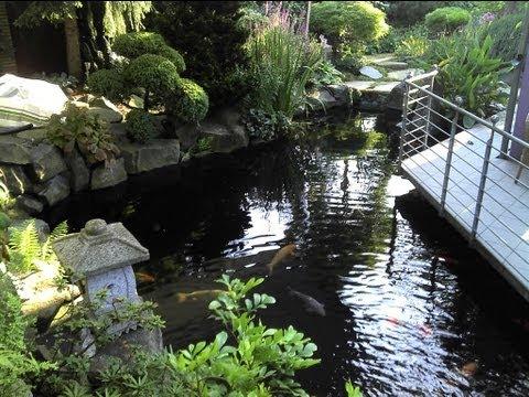 Koi-Teich (60) mit Wasserfall im japanischen Stil
