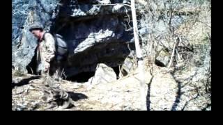 極東ロシアの森に生息するアムールヒョウ。その数はわずか50頭前後とい...
