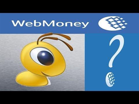 Как снять ограниченный доступ в Webmoney Passport