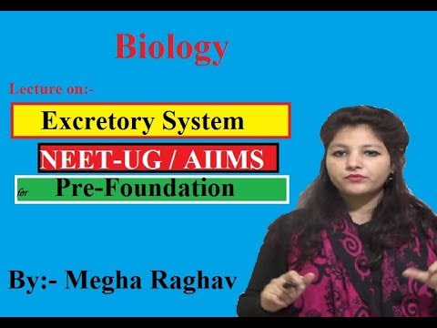Excretory System | Class X (Biology) | Medical (Pre-Foundation) | By- Megha  Raghav | Modulation