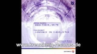 Franz Schubert - Sinfonie in C-Dur, D944, Andante/Allegro ma non troppo