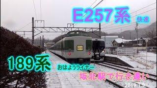 【E257 Rapid train bound for Matsumoto. 】E257 快速列車 189系おはようライナー坂北駅にて行き違い。