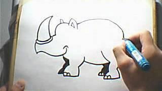 Dibujando un Rinoceronte / Drawing a Rhino