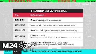 Какие пандемии действуют в мире - Москва 24