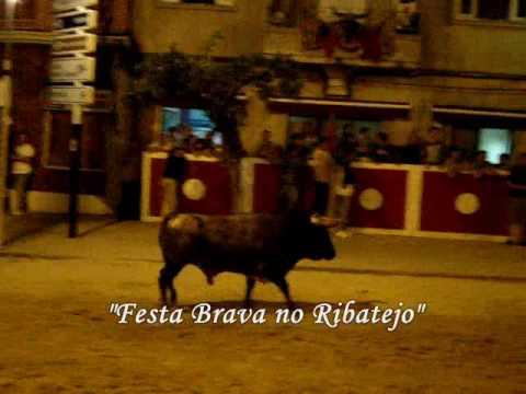 Alcochete-Festas do Barrete Verde e das Salinas 20...