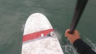 만리포 서핑 sup surfing 1 445