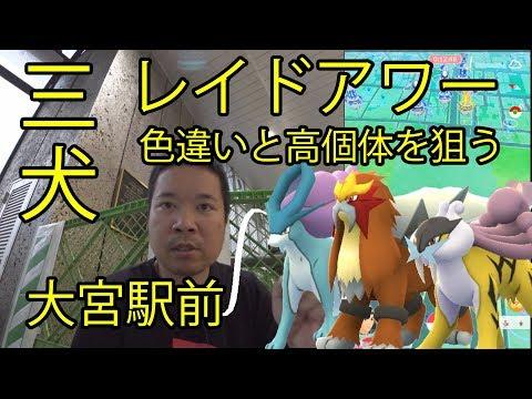 【ポケモンGO】三犬レイドアワー、高個体と色違いを狙う in 大宮駅前