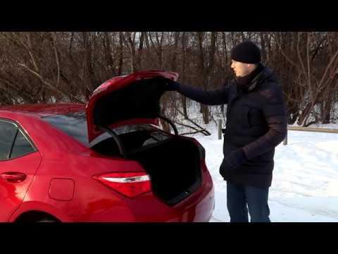 Автомобиль без искусственных подсластителей - Toyota Corolla