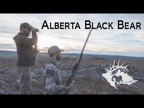 S10 E22 - Alberta Black Bear - Mountain Man Adventures