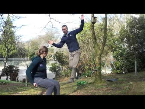 Learn to Slackline with Windermere School's Head of Outdoor Learning