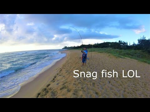 Sunshine Coast Queensland Beach And Rock Fishing