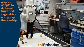 Adaptive Robotic Gripper. Grasping various soft vegetables and fruits