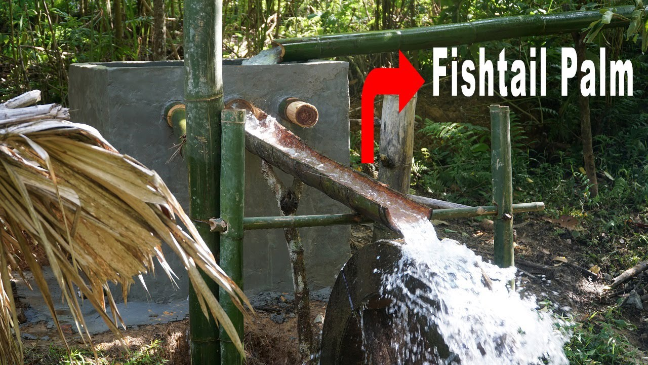 NEW WATER SYSTEM: guide water by Fishtail Palm | Primitive Skills - Ep.138