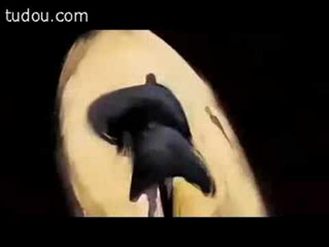 Scott Free Productions Animation, Logo, intro