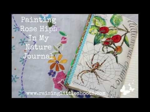 Painting Rosehips in my Nature Journal