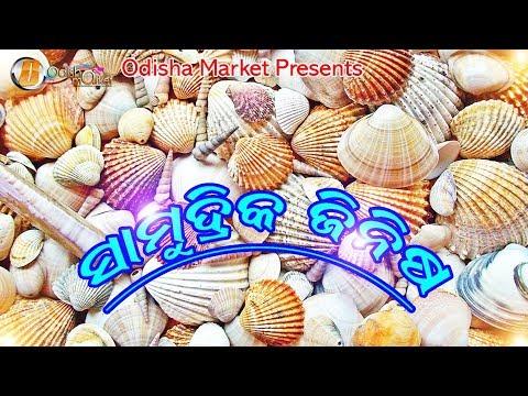 Ocean Crafts | ସାମୁଦ୍ରିକ ଜିନିଷ | ଓଡ଼ିଆ ହସ୍ତକଳା ଓ କାରୁକାର୍ଯ୍ୟ | Odisha Market
