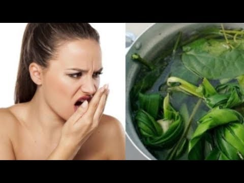 bad breath is gone, just use this natural ingredient - natural remedies
