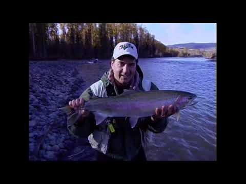 How To Fly Fish The Bulkley River For Steelhead.