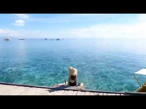 Holiday in Cebu