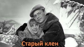 """Разбор песни """"Старый клен"""" (из к/ф """"Девчата"""")"""