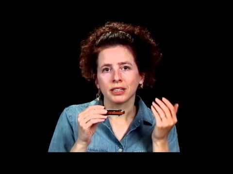Harmonica Lessons - Bending Secrets - Blues Harmonica Blueprint - Annie Raines