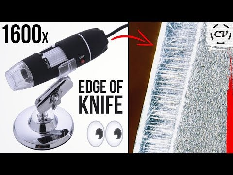 1600x-usb-microscope-review-(so-epic)
