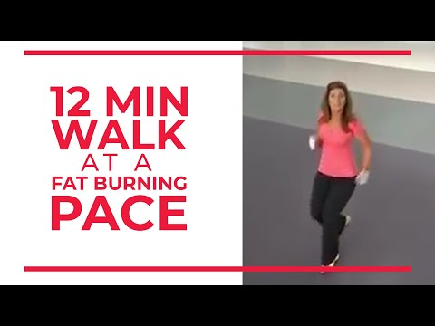 12 Minute Walk at Fat Burning Pace | Walk at Home
