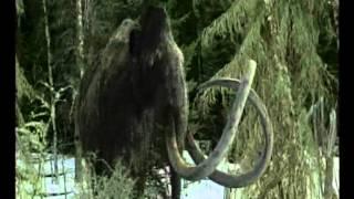 Gyapjas mamut (Wolly Mammoth) - Az utolsó mamut (Viimeinen mammutti)