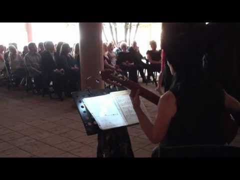Susan Grisanti Pachelbel Canon & Wedding March Processional @ Caprock Winery
