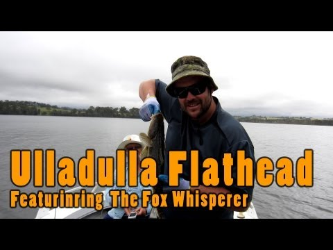 Ulladulla Fishing With The Fox Whisperer