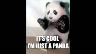 Download I'm Just A Panda-Original Song Mp3 and Videos