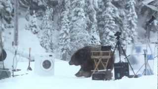Ржач)Медведь помог протестировать стиральную машину!)(Медведь помог протестировать стиральную машину!)))))/ реклама стиралки Samsung //Huge Bear Surprises Crew on EcoBubble Photo Shoot in BC., 2013-02-15T14:33:57.000Z)
