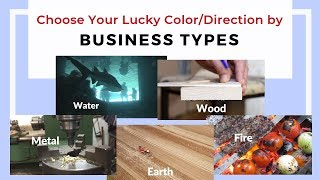 Based on your business or career types according to the Chinese 5 e...