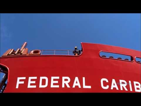 Ship FEDERAL CARIBOU on Welland Canal
