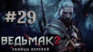 Прохождение The Witcher 2 Assassins of Kings #29 - СПАСЕНИЕ АНАИС
