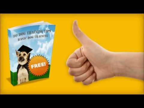 "Free Dog Training Books - Download ""90 Dog Training Tips"" for **FREE**"